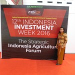INDONESIA INVESTMENT WEEK 2016
